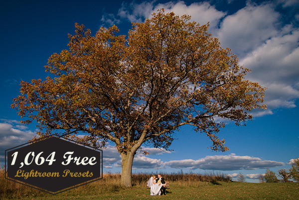 1,064 Free Lightroom Presets 1