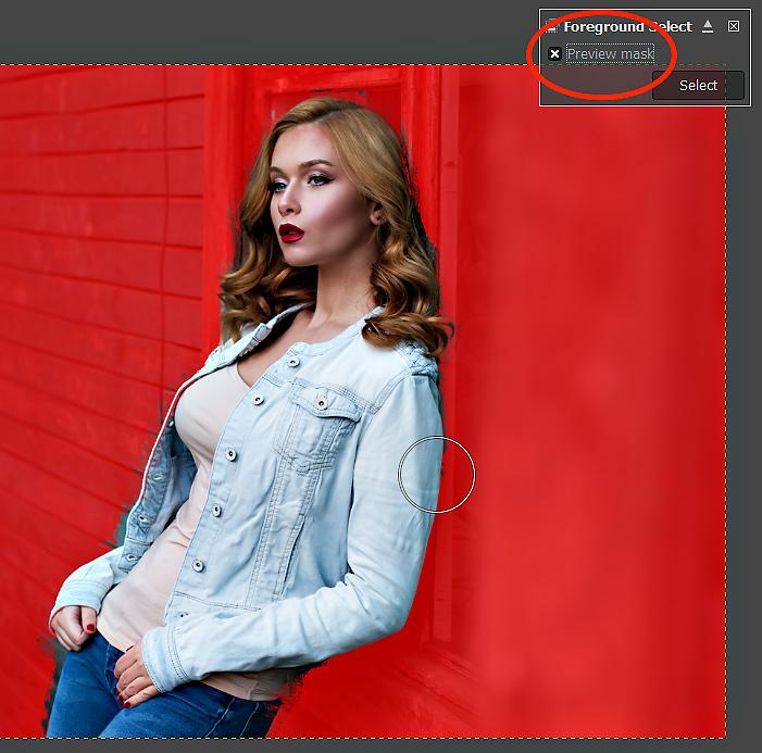 GIMP Tutorial - Foreground Select Tool 7