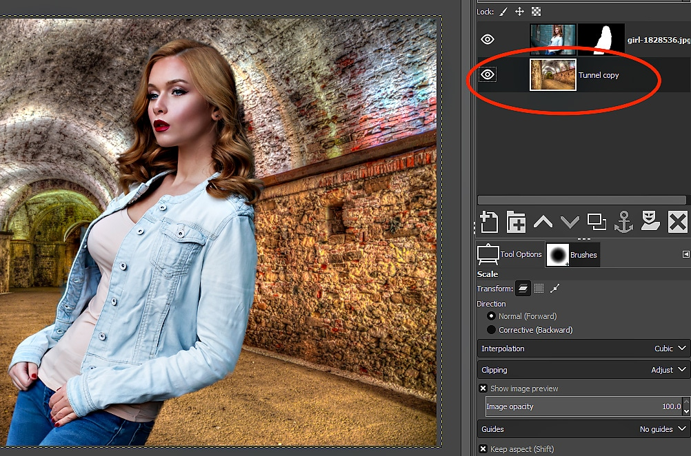 GIMP Tutorial - Foreground Select Tool 13